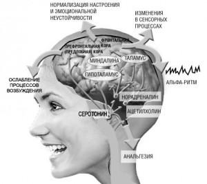 Альфа-состояние увеличивает возможности человека